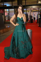 Raashi Khanna in Dark Green Sleeveless Strapless Deep neck Gown at 64th Jio Filmfare Awards South ~  Exclusive 152.JPG