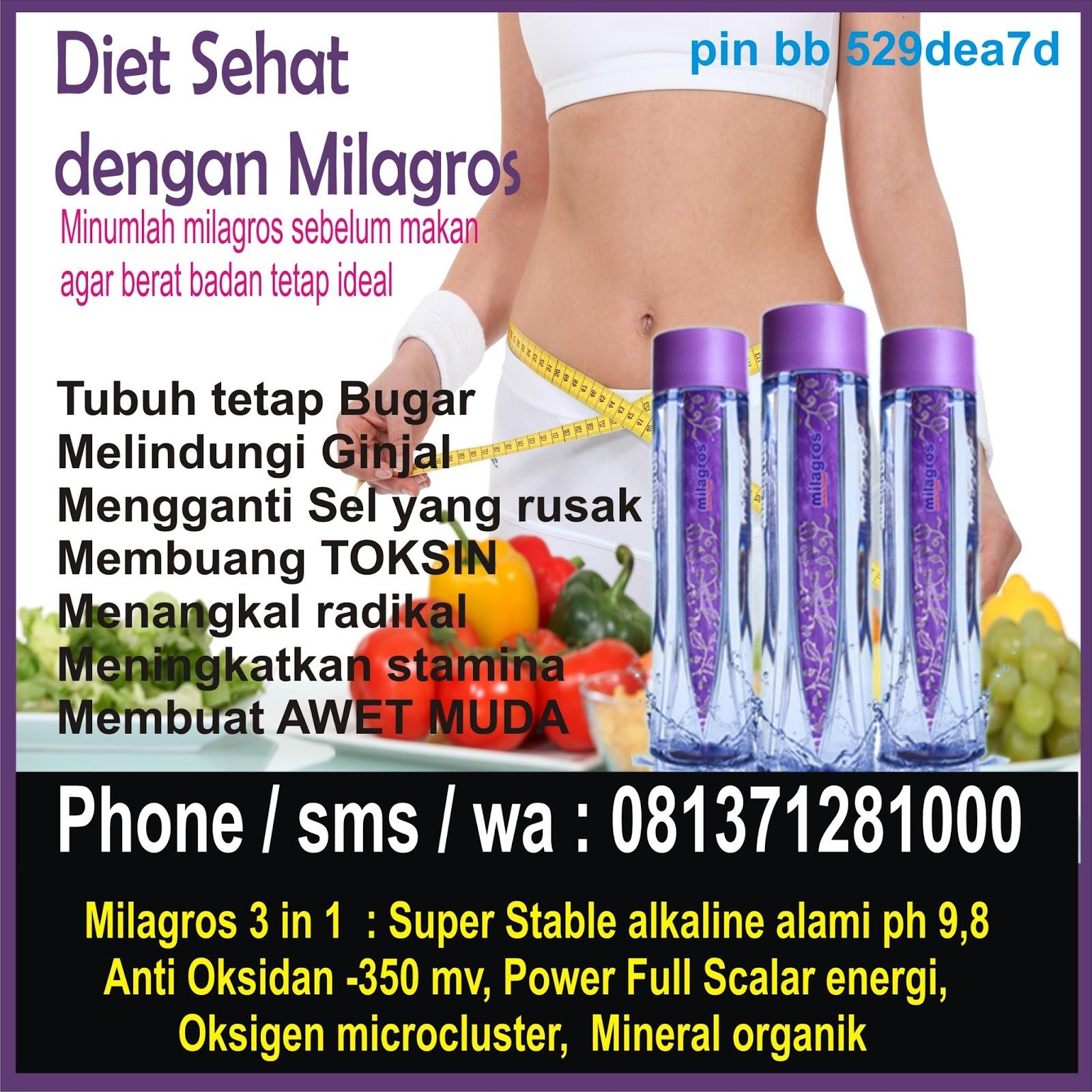 Mencari diet sehat ala Indonesia