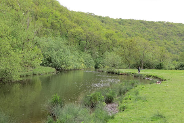 Riverside view of meadow and tree covered valley sides. A solitary angler stands on the bank.