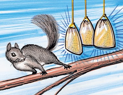 Spank the squirrel