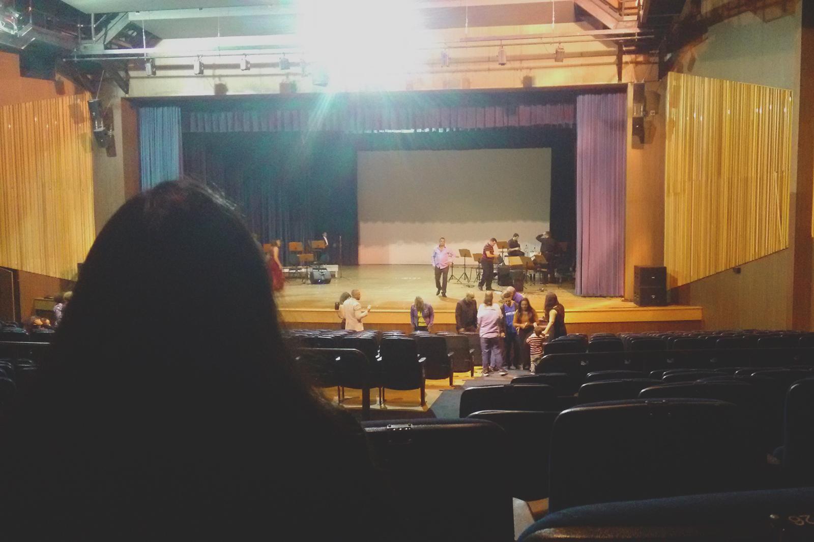 vista público teatro castro mendes