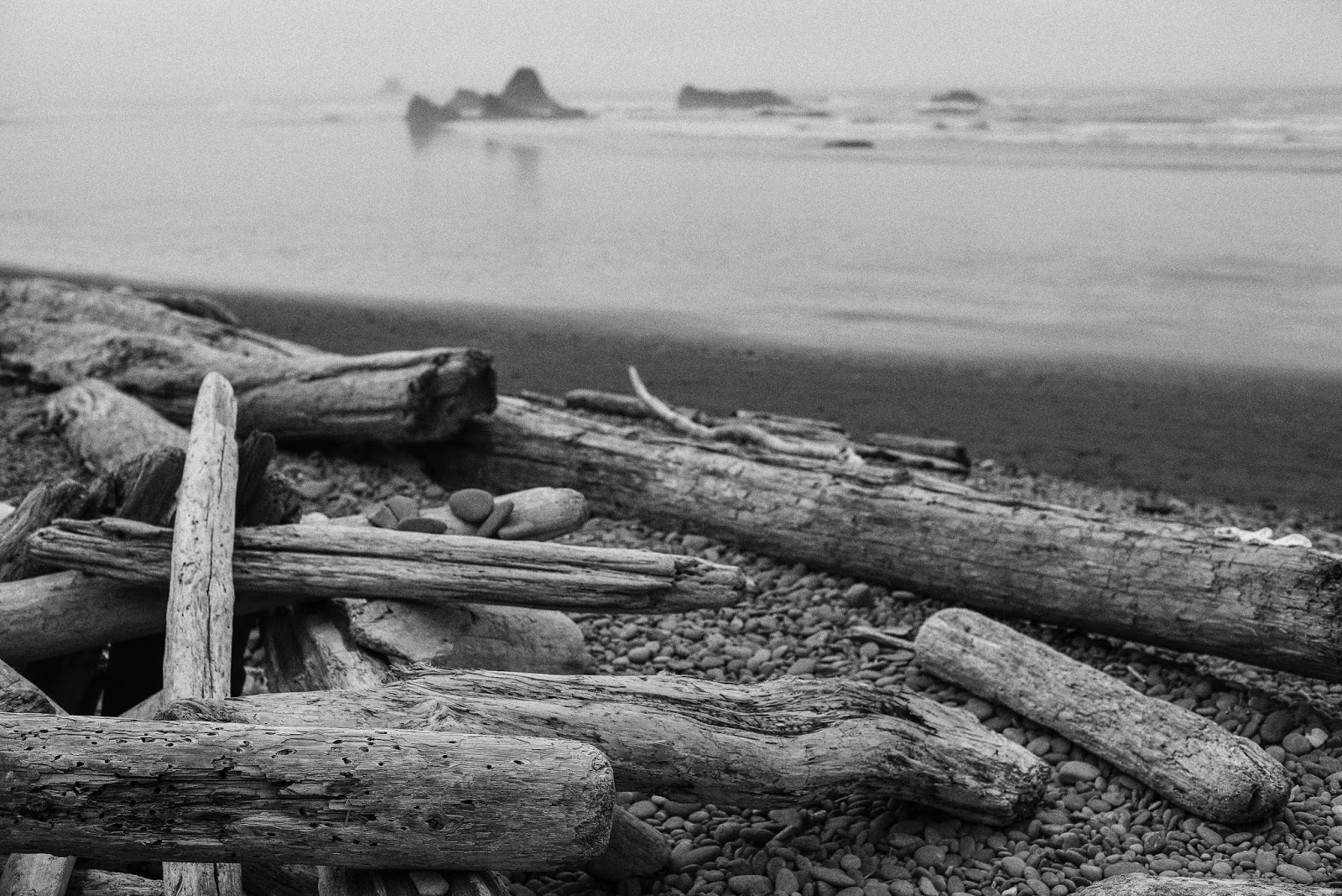Driftwoods in Ruby Beach, Washington