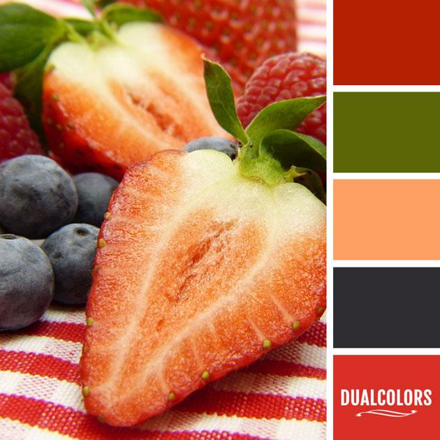color_paleta_142