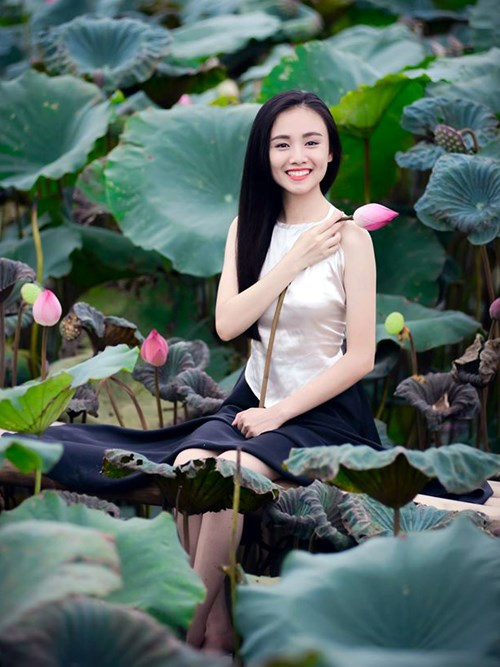 9603d6b1dc8b udic-Pink lotus flowers in West Lake blossom against blue background of sky