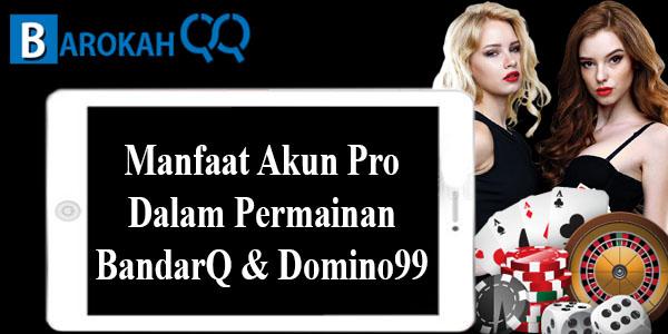 Manfaat Akun Pro Dalam Permainan BandarQ dan Domino99