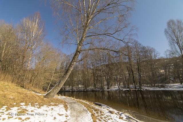 Sendero Akerselva en invierno - Oslo por El Guisante Verde Project