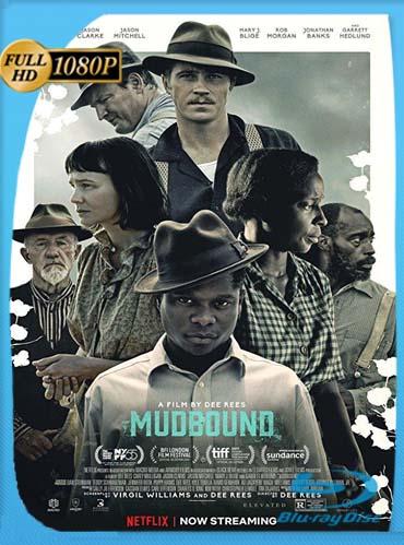 Mudbound (2017) HD [1080p] Latino [GoogleDrive] SilvestreHD