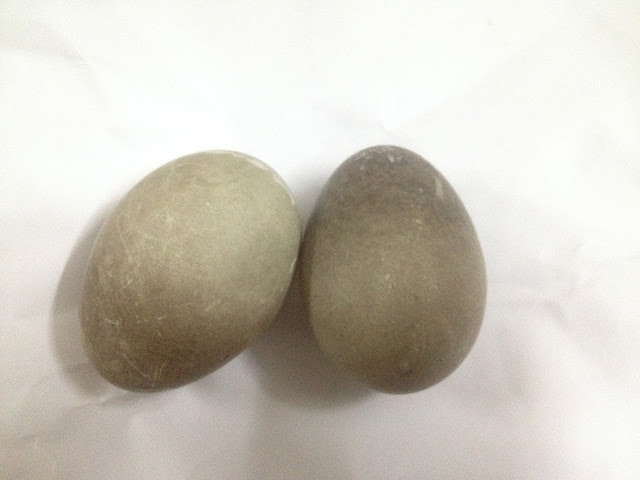 Two black eggs