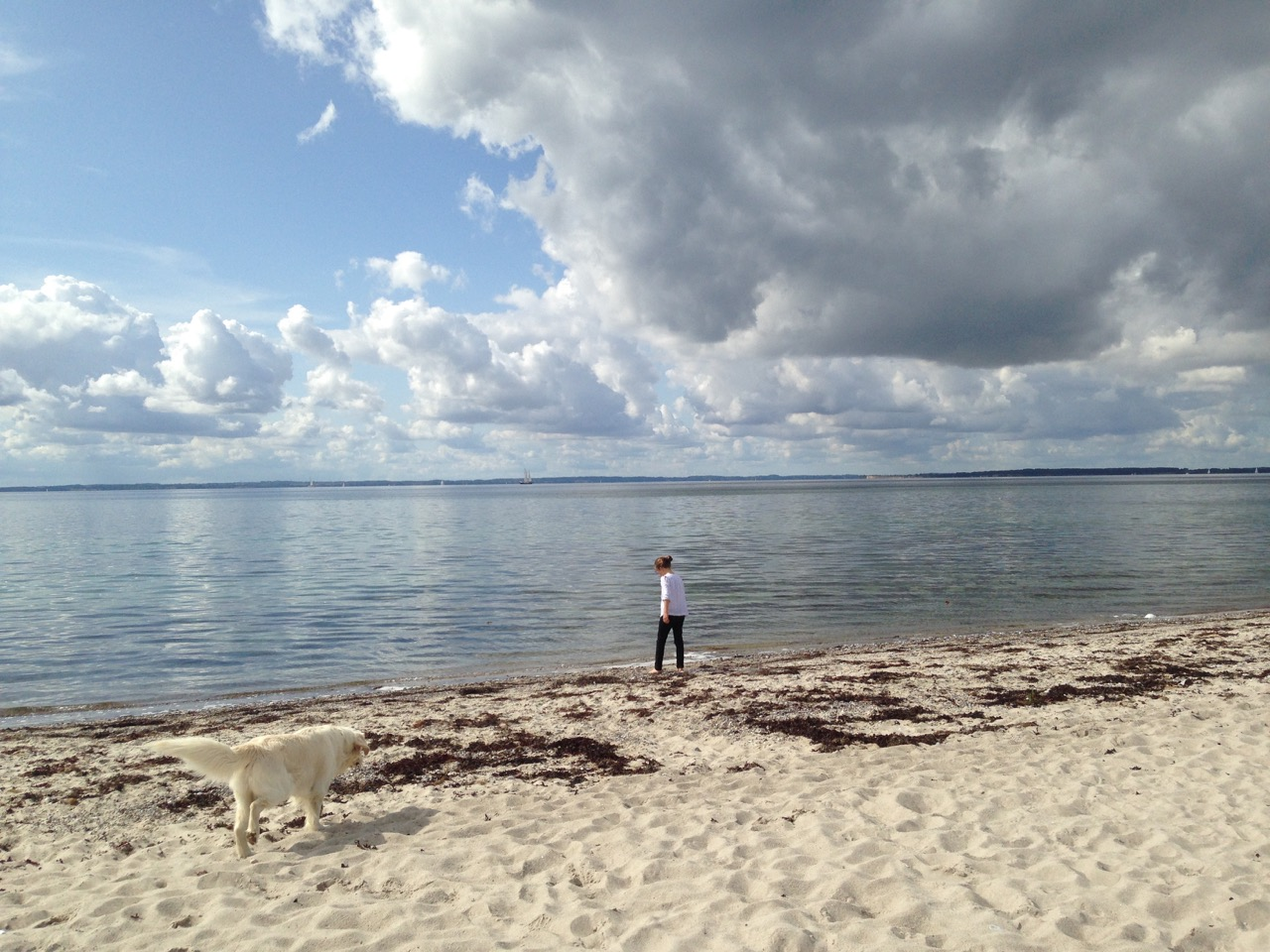VisualVest/ Dänemark: Insel Kegnaes und die Ostsee