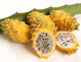 La Pitahaya, la fruta del dragón