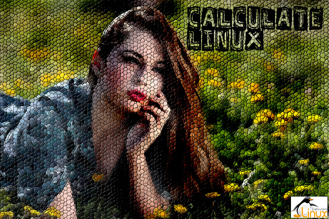 Calculate Linux Girl