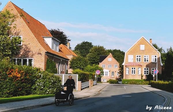 case-cladiri-Tonder-Danemarca