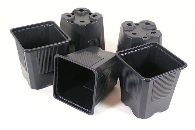 khay-nhựa-trong-cây-plascon-net