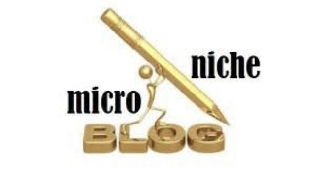 Kişisel Blog mu Niche Blog mu?