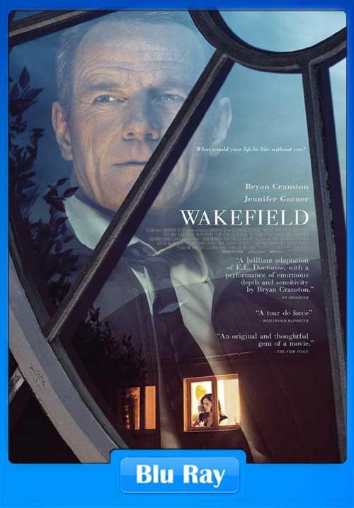 Wakefield 2016 350MB Movie Download 480p BRRip x264