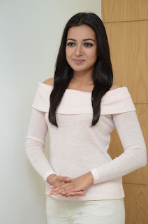Actress Catherine Tresa Stills in White Dress at Sarrainodu Interview  0015.JPG