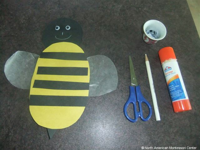 NAMC montessori preschool classroom studying honeybees paper bee