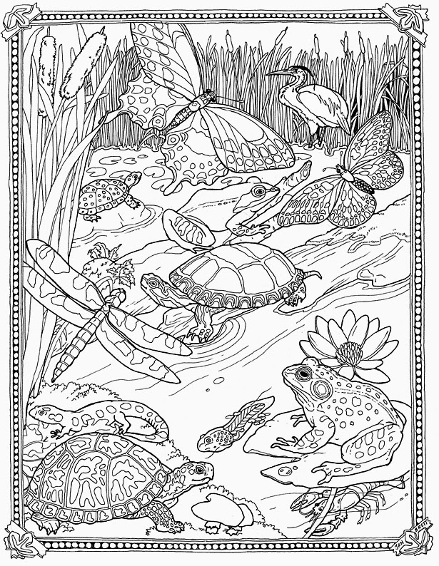 jan brett coloring pages jan brett coloring and coloring pages on