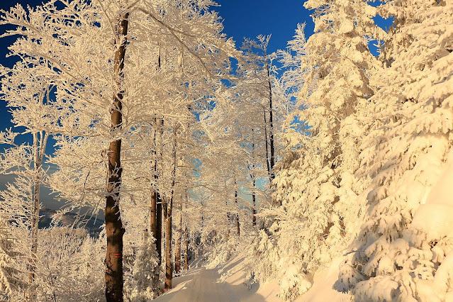 Hala Boracza zimą