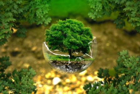 Mencermati Kondisi Lingkungan Hidup di 2019 dan Tantangan Kedepan