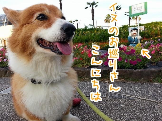 公園と風太02