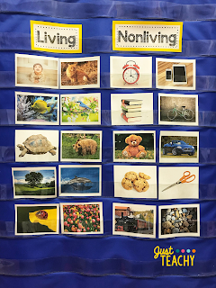 Living & Nonliving Pocket Chart Sort, www.JustTeachy.com