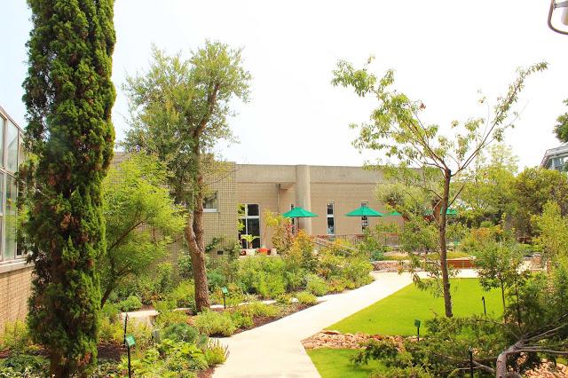 山口県、宇部市のときわ公園の植物園がリニューアルしたよ【Y】 プラントハンター西畠清順、世界を旅する植物館  ヨーロッパゾーン、庭園