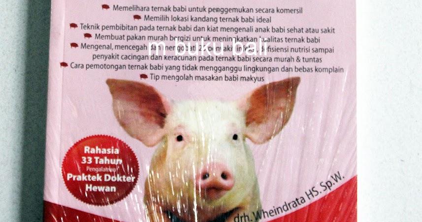 62+ Gambar Babi Mudah Paling Keren