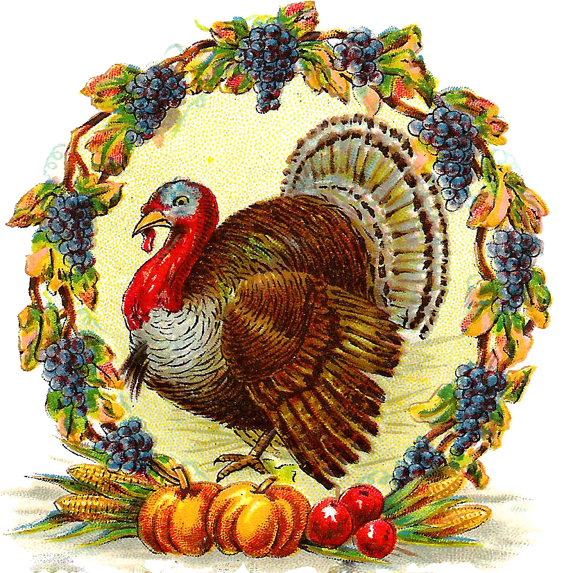 vintage post card wreath turkey