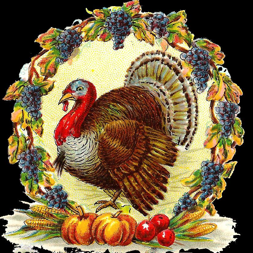 vintage post card wreath turkey