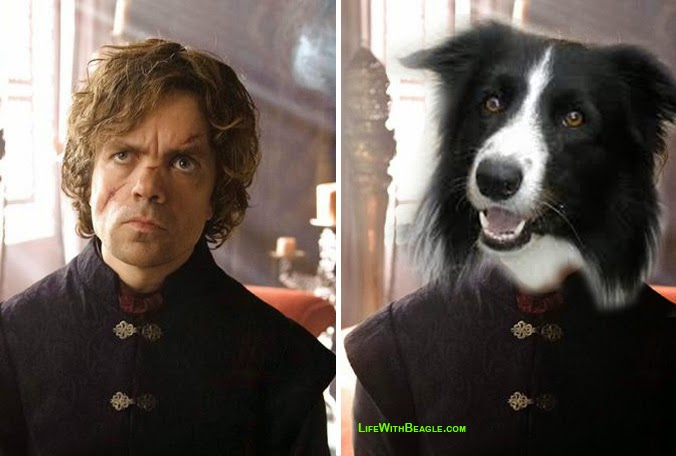 Game of Thrones characters as dogs