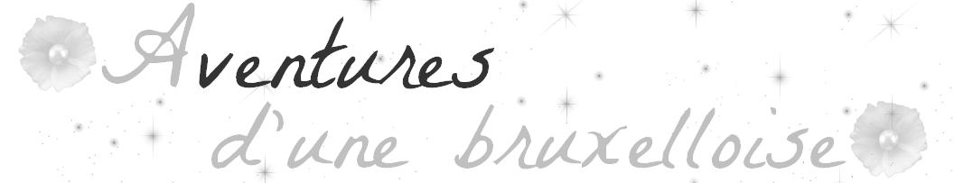 http://aventuresdunebruxelloise.blogspot.be/