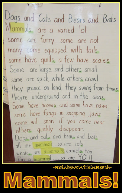 photo of: Anchor Chart for Mammals Rhyme