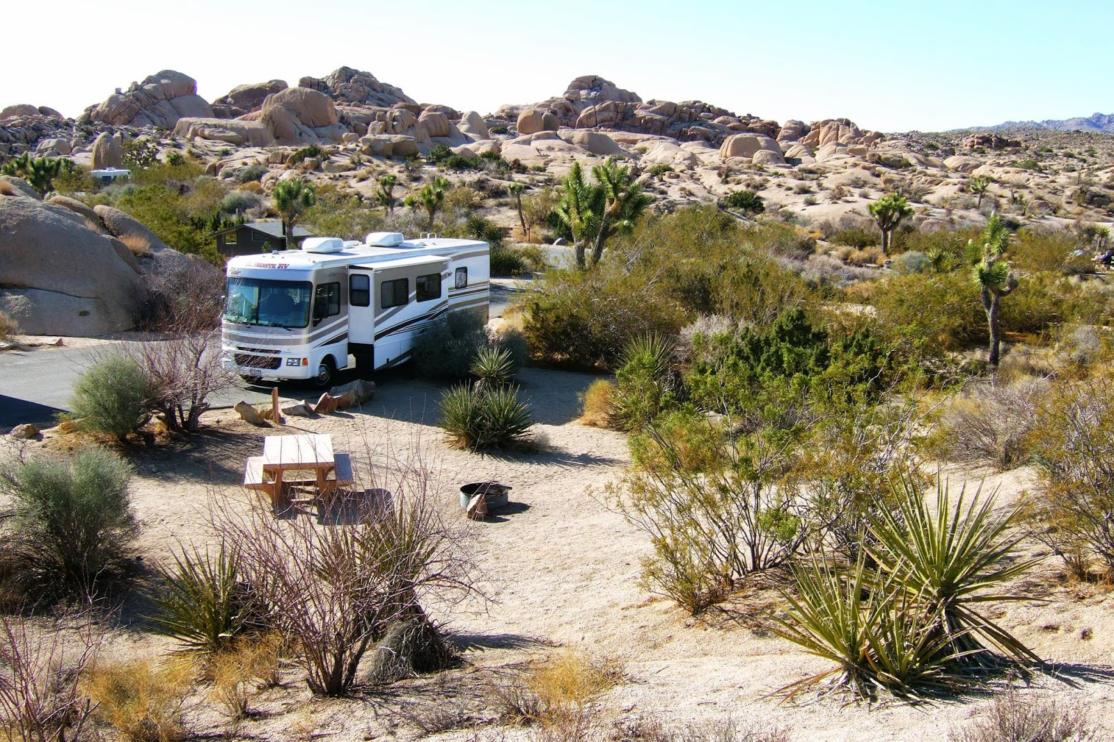 mojave desert campgrounds
