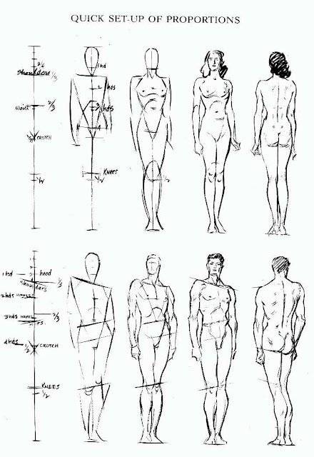 Thoughts in Design: Human Anatomy Part II