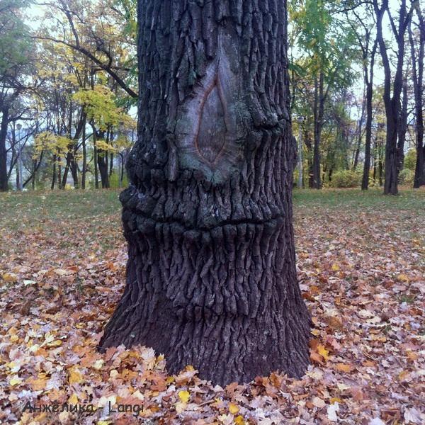 Осенние зарисовки. Верхний парк