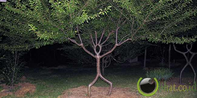 Patung Pohon