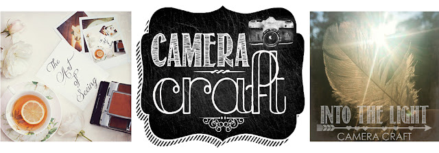 Camera Craft Photography e-course on line workshop Galia Alena
