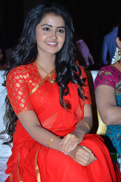 Anupama Parameswaran at Shatamanam Bhavati Success Meet