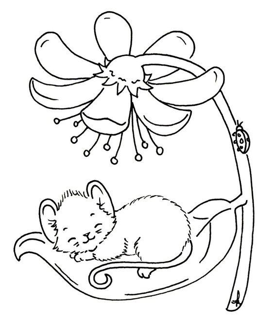 Tranh tô màu chú chuột nằm trên chiếc lá