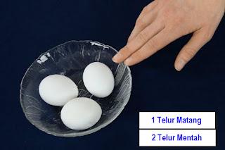 http://www.thoharianwarphd.com/2016/10/percobaan-sains-membedakan-telur-mentah.html