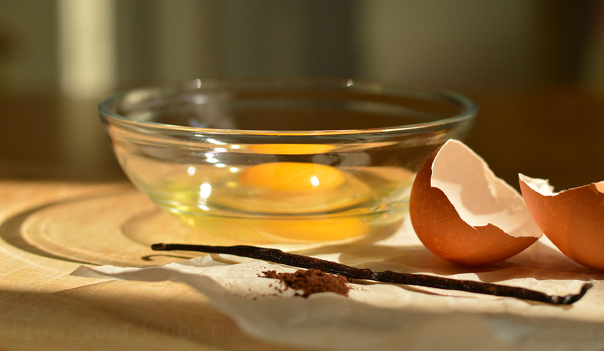 Still life of vanilla pods and egg yolks in a bowl, photo by Honeycat Cookies