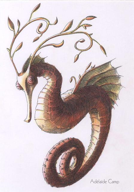 Adélaïde Camp Illustratrice Hippocampe