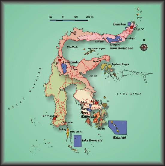 Keanekaragaman Flora Dan Fauna Di Dunia Dan Indonesia