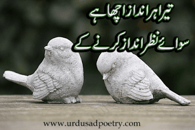 Tera Her Andaaz Acha Hay