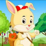 Games4King Tiny Lovely Rabbit Rescue