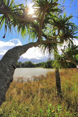 Sisi timur danau Nefokau