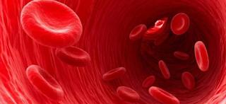 Download Soal UH IPA Kelas 5 Bab Darah semester 1 ktsp
