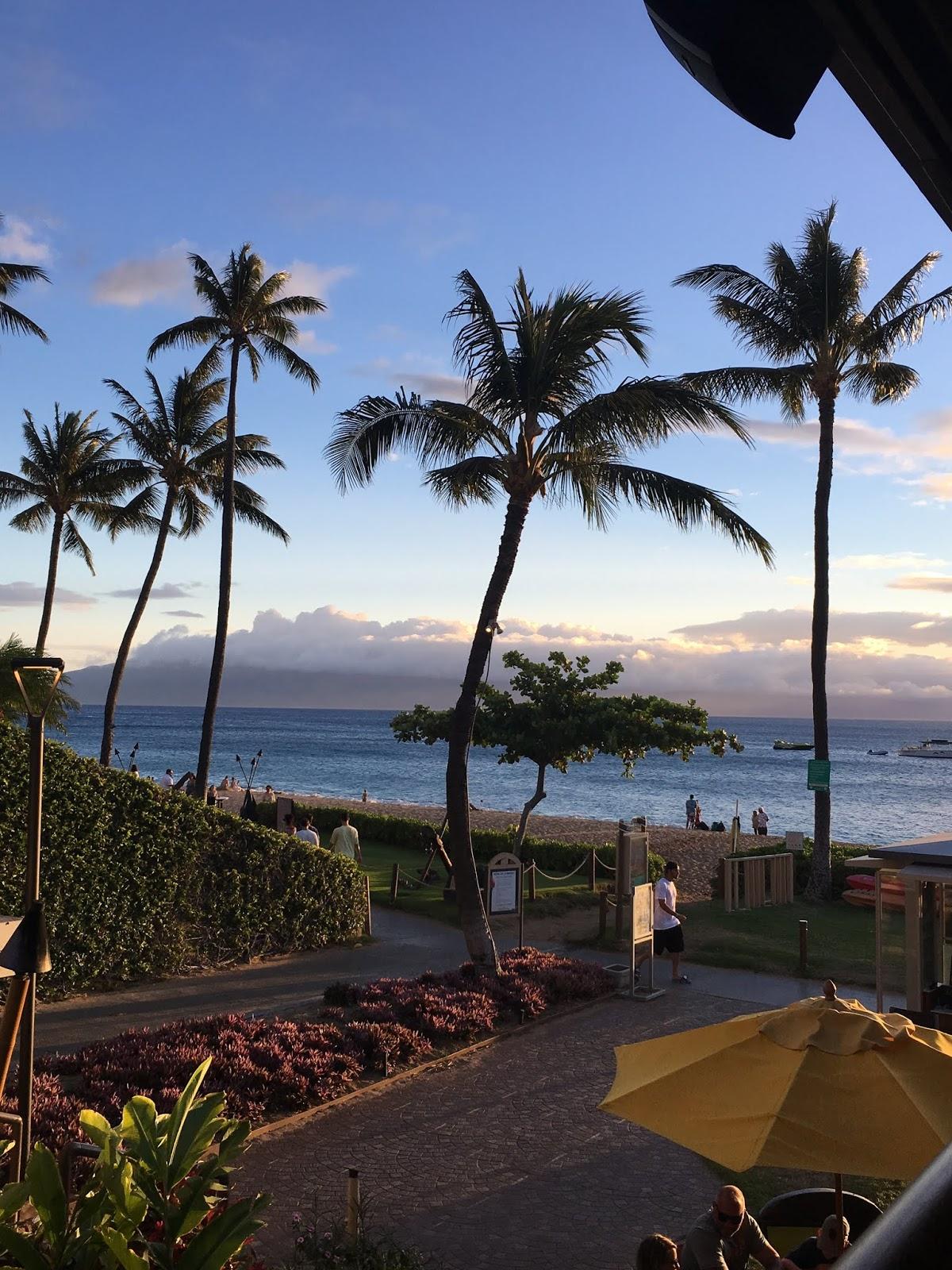 All Things Tiffany Lynn: A Proposal in Hawaii - Maui 2018