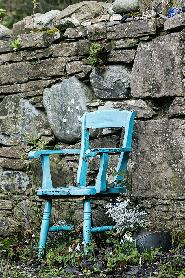 winter garden photography - rustic charm with an old painted turquoise chair